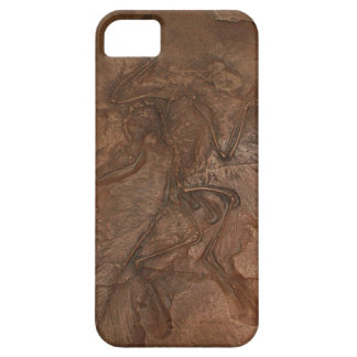 Archaeopteryx fossil - Casemate iPhone 5 Case