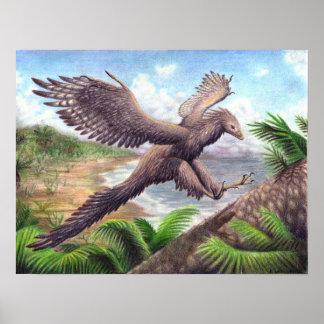 Archaeopteryx Print