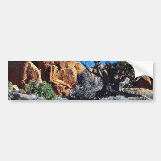 Arches Arches National Park Bumper Sticker