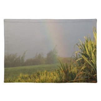Arching Rainbow Placemat