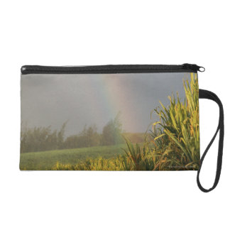 Arching Rainbow Wristlet Clutches