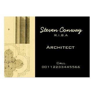 Architect ~ Gothic Architecture Design Business Cards