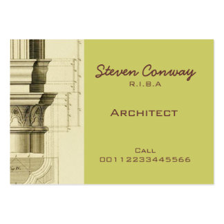 Architect ~ Gothic Architecture Design Pack Of Chubby Business Cards