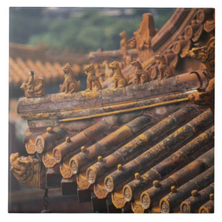 Architectural details in the Forbidden City, Tile