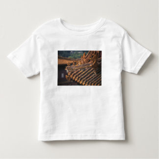 Architectural details in the Forbidden City, Toddler T-Shirt