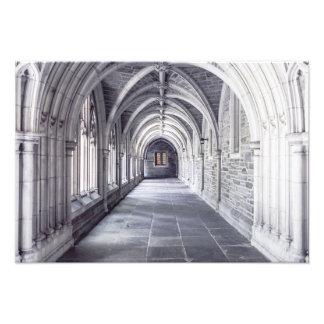 Architecture Elements Arches Photo