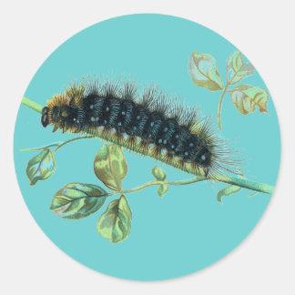 Arctia caja caterpillar classic round sticker