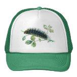 Arctia caja caterpillar hats