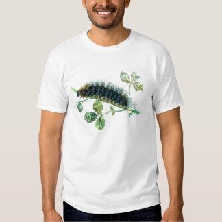Arctia caja caterpillar tees