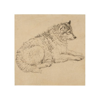 Arctic Dog, Facing Right (pencil on paper) Wood Wall Art