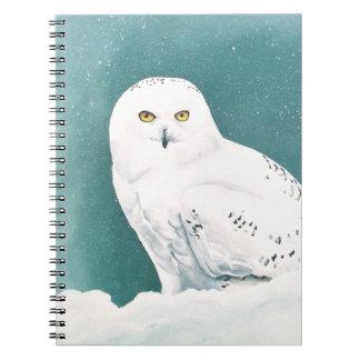Arctic Eyes Notebooks