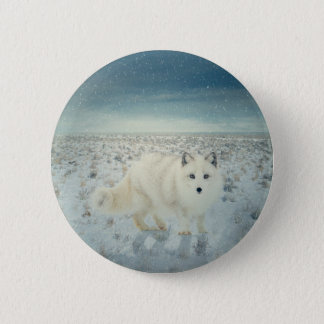 Arctic Fox 6 Cm Round Badge