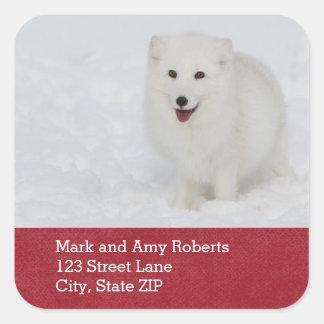 Arctic Fox Address Sticker