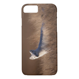 arctic fox, Alopex lagopus, on the 1002 coastal iPhone 8/7 Case