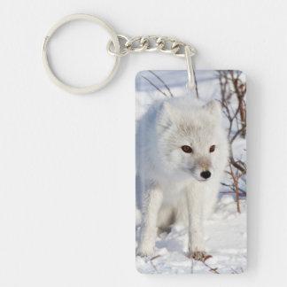 Arctic Fox , Churchill Wildlife Management Area Double-Sided Rectangular Acrylic Key Ring