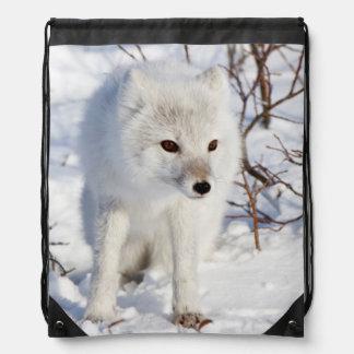 Arctic Fox , Churchill Wildlife Management Area Drawstring Bag