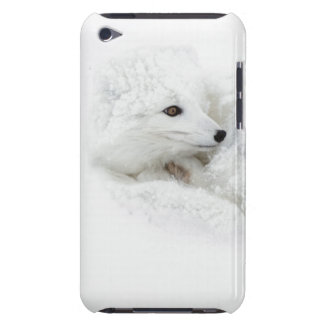 Arctic Fox curled up in winter Barely There iPod Covers