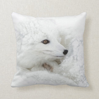 Arctic Fox curled up in winter Cushion
