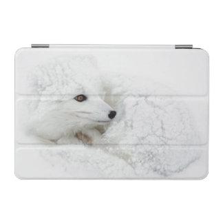 Arctic Fox curled up in winter iPad Mini Cover