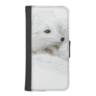 Arctic Fox curled up in winter Phone Wallet
