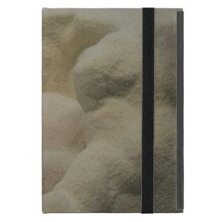 Arctic Fox Den Cases For iPad Mini