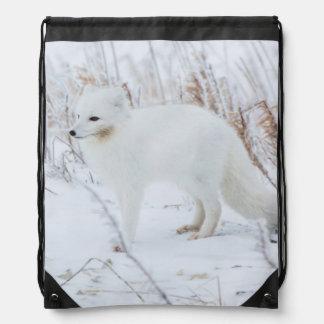 Arctic Fox Drawstring Bag