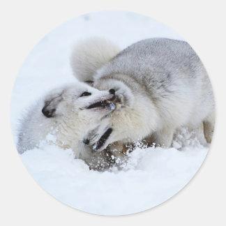 Arctic Fox Fight Classic Round Sticker