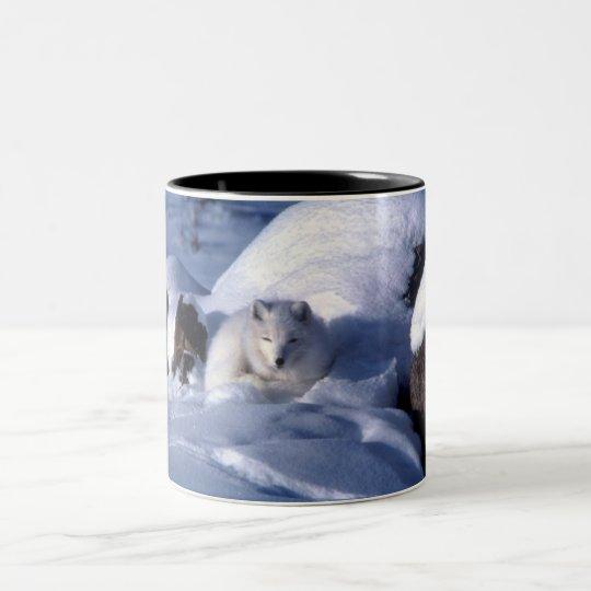 Arctic Fox in Snow Two-Tone Coffee Mug