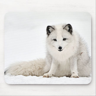 Arctic Fox in the Snow Mouse Mat