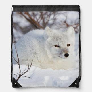 Arctic Fox in winter Drawstring Bag