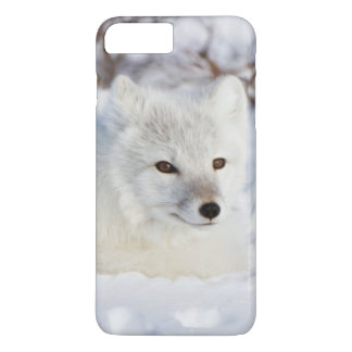 Arctic Fox in winter iPhone 8 Plus/7 Plus Case