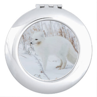 Arctic Fox Mirrors For Makeup