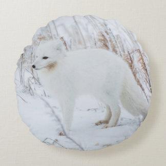 Arctic Fox Round Cushion