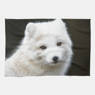 Arctic Fox Tea Towel
