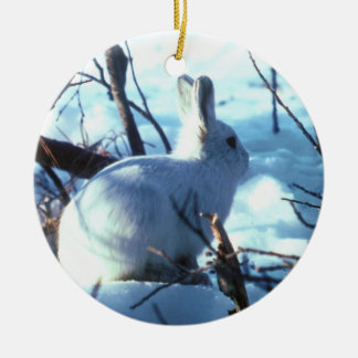 Arctic Hare in Snow Christmas Ornament