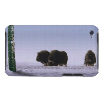 Arctic Musk Oxen & Totem Pole Bovines Wildlife Art Barely There iPod Case
