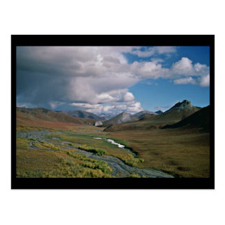 Arctic National Wildlife Refuge Postcard