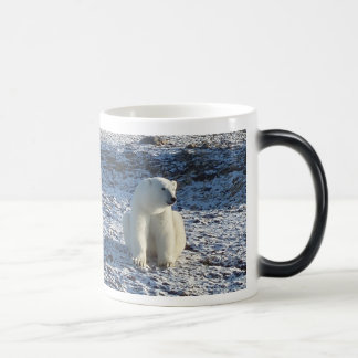 Arctic Polar Bear, Arctic Cold Magic Mug