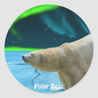 Arctic Polar Bear & Aurora Art Stickers