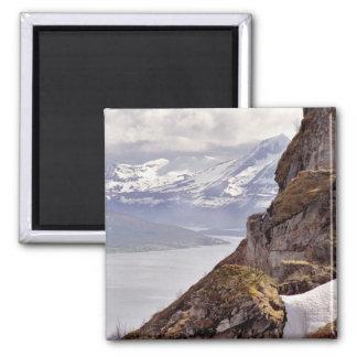 Arctic Rock Magnet