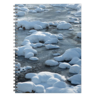 Arctic Scene Notebooks