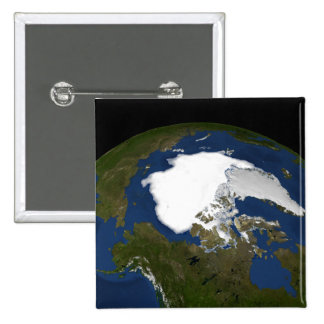 Arctic sea ice in 2005 15 cm square badge