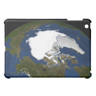 Arctic sea ice in 2005 iPad mini cases