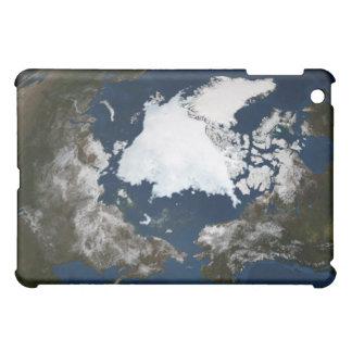 Arctic sea ice iPad mini cases