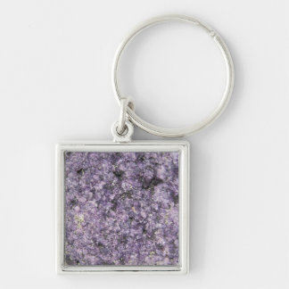 Arctic stones Silver-Colored square key ring