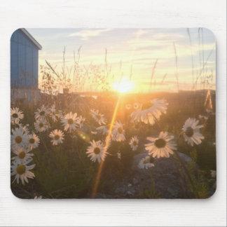 arctic sunset mousepad