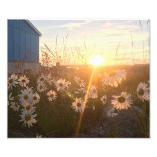 arctic sunset print photograph