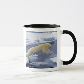 Arctic, Svalbard, Polar Bear extending and Mug