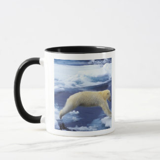 Arctic, Svalbard, Polar Bear hovering with all Mug