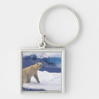 Arctic, Svalbard, Walrus being freindly Key Ring